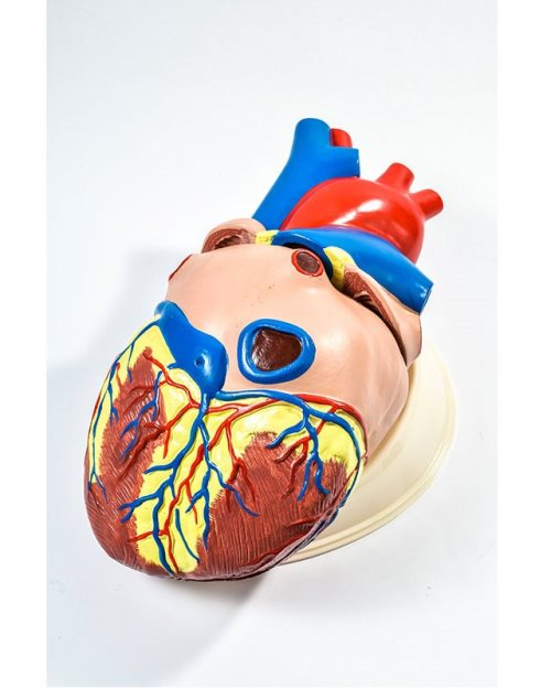 БМ030 - Велико  срце (3 дела)